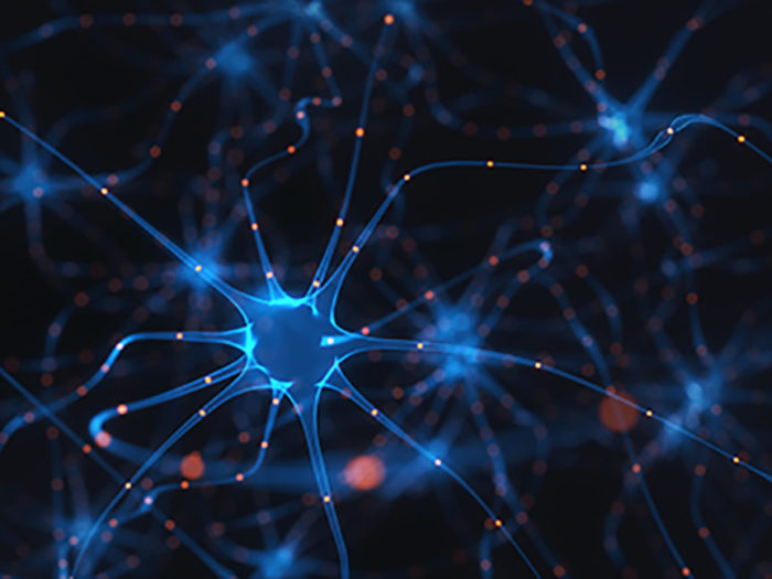 Partnership to Uncover Connection Between Ancient Retroviruses and ALS