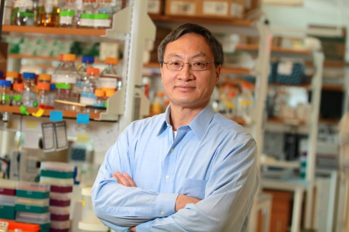 Under the Microscope: Fen-Biao Gao of<br>UMass Medical School Explains His Now-Funded Project Targeting Biomarkers and Disease Modifiers for ALS and FTD
