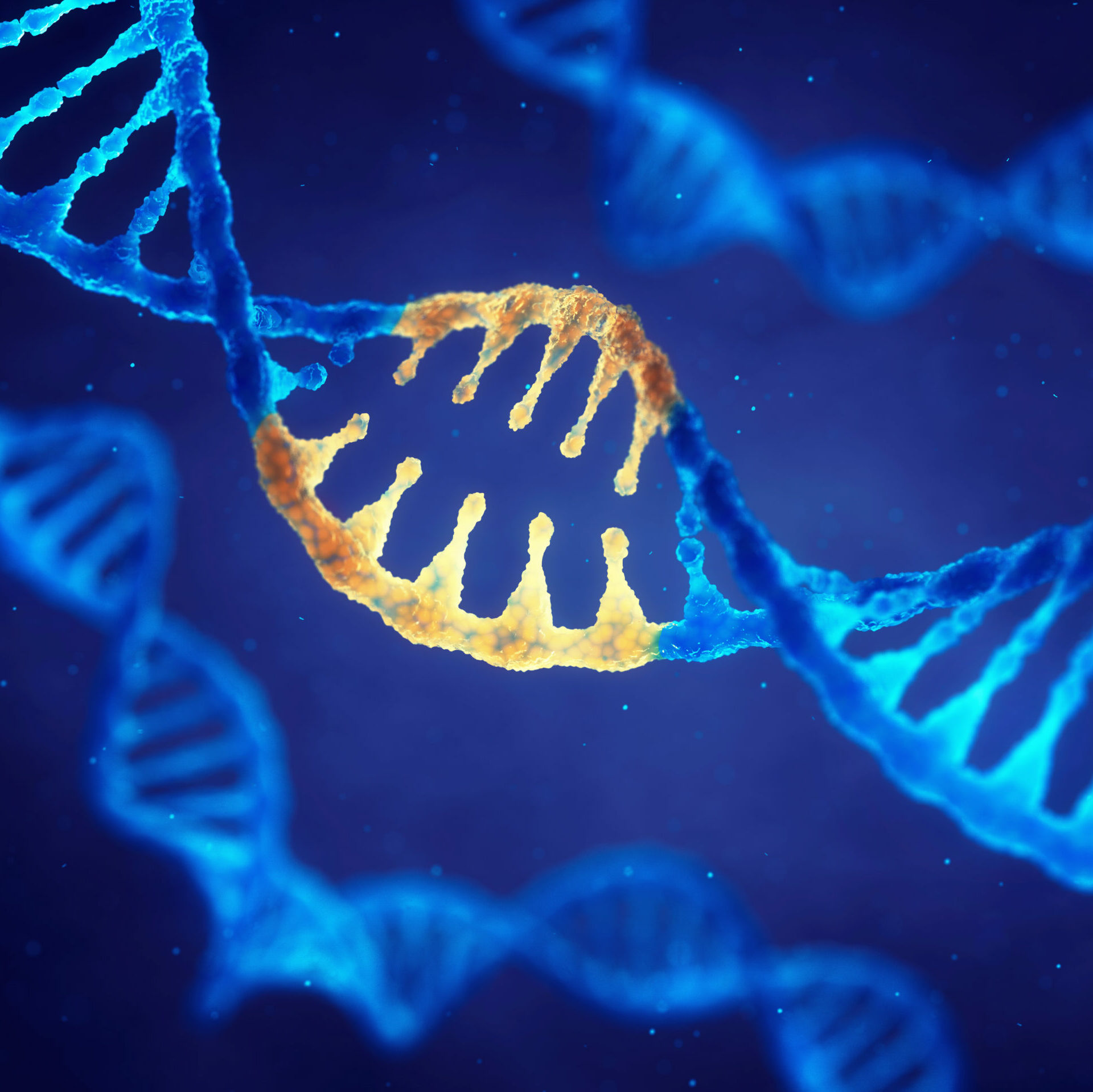 Understanding ALS-Related Genes Leads to New ALS Therapeutic Insights